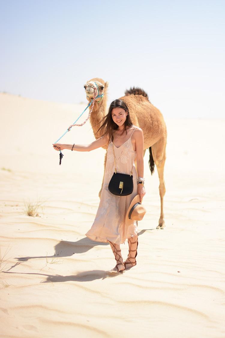 DSC_3016 Sahara