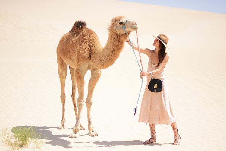 DSC_30911 Sahara