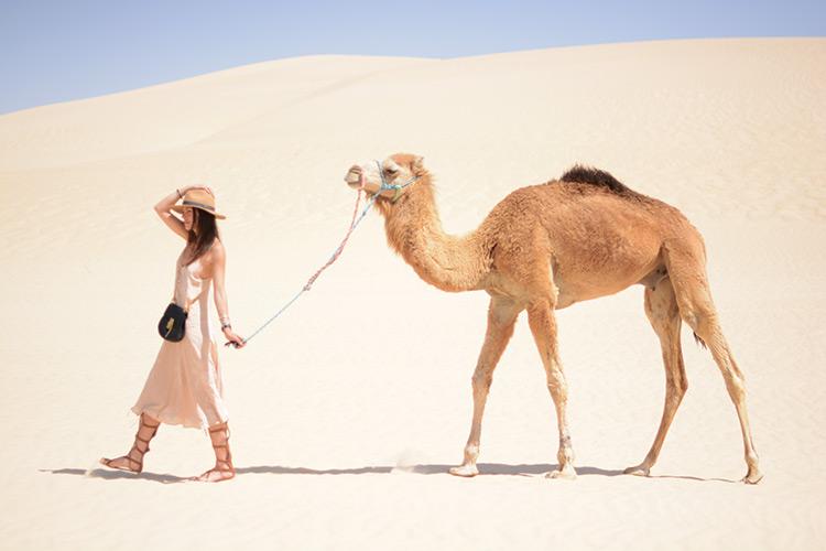 DSC_3139 Sahara