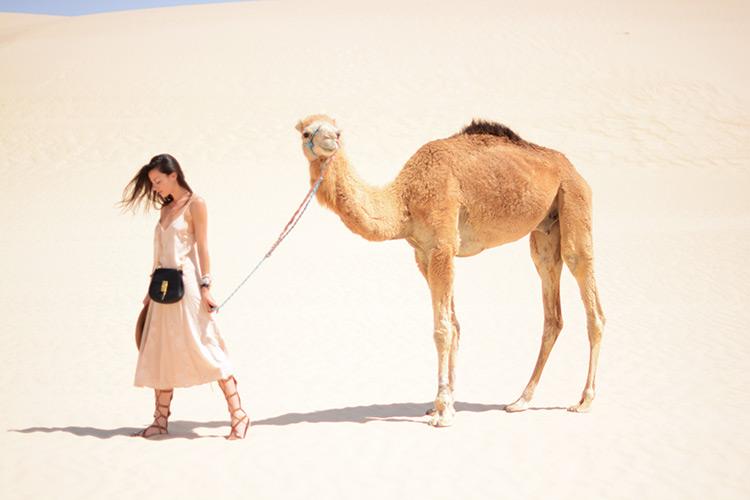 DSC_3147 Sahara