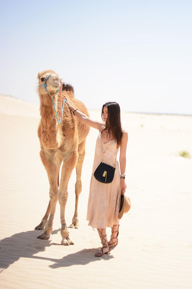 DSC_3164 Sahara